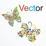 Vector la mariposa ideal Imagen de archivo