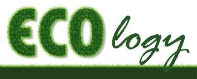 Vector la palabra de la ecología hecha de hierba en el fondo blanco stock de ilustración