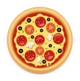 Vector la pizza caliente detallada con el icono pegajoso del queso y del salami ilustración del vector