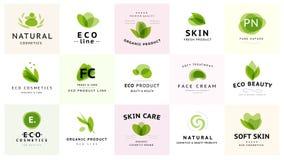 Vector la raccolta di bellezza trasparente, dei cosmetici di eco e dei simboli sani del trattamento nei colori verdi isolata su f illustrazione di stock