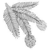 Vector la rama con la secoya de la secoya o de California del esquema en negro aislada en el fondo blanco Rama del árbol conífero ilustración del vector