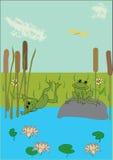 Vector la rana de A Foto de archivo libre de regalías