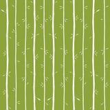 Vector la struttura di bambù Immagine Stock