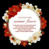 Vector la struttura floreale d'annata con i fiori lussuosi dell'estate Immagine Stock Libera da Diritti