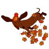 Vector la tarifa del dibujo, que lanza las hojas de arce en otoño libre illustration