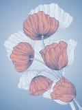 Vector la tarjeta de felicitación. Imagen de archivo libre de regalías