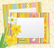 Vector la tarjeta de pascua, marcos vacíos de la foto con el daffod libre illustration