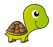 Vector la tartaruga Fotografia Stock