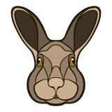 Vector la testa di disegno di un coniglio, lepre Fotografia Stock