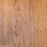 Vector la textura de madera Imagen de archivo libre de regalías