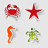 Vector label for design. Collection of marine animals in the form of stickers Royalty Free Stock Photo