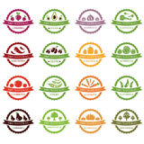 Vector labels with vegetables Stock Images