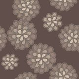 Vector lace floral pattern Stock Images
