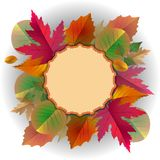 Vector lace frame with autumn leaves Royalty Free Stock Photo