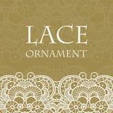 Vector lace ornament background. Vector retro lace ornament on color background. Eps10 Stock Photos