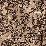 Vector lace seamless pattern Stock Photos