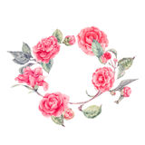 Vector lace wreath with camellia flowers Stock Photography