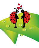 Vector ladybugs Royalty Free Stock Photography