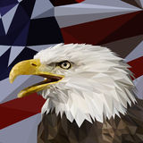 Vector lage poly met Eagle Head stock fotografie