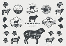 Vector Lamb Logo, Icons, Charts and Design Elements Stock Images