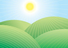 Vector landscape Stock Photography