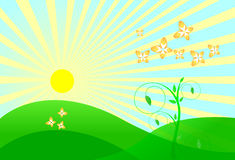 Vector landscape. With sun , butterfly and meadow Royalty Free Stock Photos