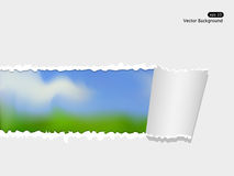 Vector landscape Royalty Free Stock Photos
