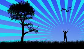 Vector landscape. Landscape of tree, sun, birds and happy boy Royalty Free Stock Photo