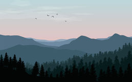 Vector landscape with blue silhouettes of mountains, hills and f. Orest with sunset or dawn pink sky royalty free illustration