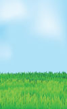 Vector landscape, blue sky green field Stock Photography