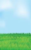 Vector landscape, blue sky green field Stock Photography