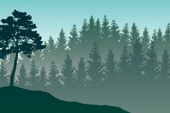Vector landscape with detailed green layered misty forest. Vector landscape with detailed green layered misty forest stock illustration