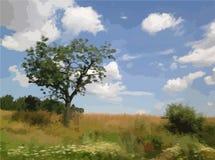 Vector Landscape Fields tree. Vector landscape yellow field with tree bue sky stock illustration