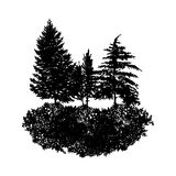 Vector landscape with fir trees Stock Image