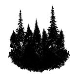 Vector landscape with fir trees Stock Images