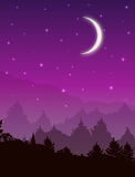Vector landscape with forest at night. Pink sky with stars and glowing moon Stock Photos