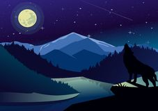 Vector landscape illustration with mountains and forests in night time. Wolf on the top of mountain howling at the moon vector illustration