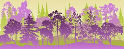 Vector landscape with pine trees. Vector landscape with pine and fir trees, abstract nature background, forest template, hand drawn illustration royalty free illustration