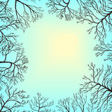 Vector landscape with sky and tree branches Stock Photos
