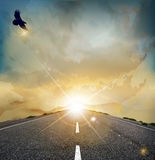 Vector landscape with  soaring eagle. Vector landscape with rising sun, soaring eagle, and the road Royalty Free Stock Photos