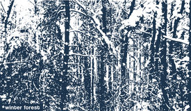 Vector landscape winter forest, texture, monochrome prints on fabric, backgrounds, cold blue tone Stock Photos