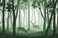 Free Vector Landscape With Green Trees In Forest And Two Deers Royalty Free Stock Photos - 126123488