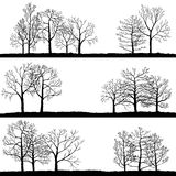 Vector landscapes with winter trees Royalty Free Stock Images