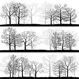 Vector landscapes with winter trees Stock Photo
