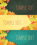 Vector large set of colorful, hand drawn style autumn leaves Royalty Free Stock Photos