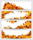 Vector las banderas con las calabazas y las hojas de otoño anaranjadas stock de ilustración