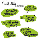 Vector las etiquetas con la comida sana dibujada mano de las letras Imagen de archivo