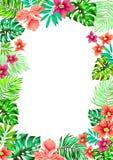 Vector las flores Capítulo para las invitaciones Fotografía de archivo libre de regalías
