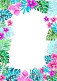Vector las flores Capítulo para las invitaciones Imagen de archivo