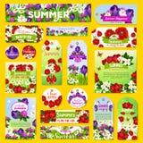 Vector las flores del verano que saludan etiquetas o las banderas fijadas stock de ilustración